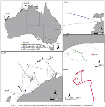 Importance of Australia's offshore Oil and Gas Infrastructure for Fish