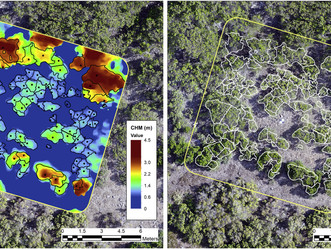 Congrats to Alejandro Navarro on the new Paper in the Remote Sensing of Environment!