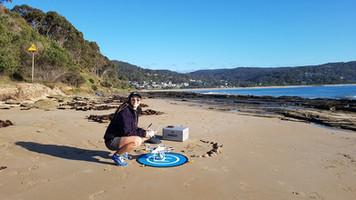 Monitoring Coastline Erosion Risk