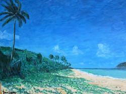 Palmera y Playa