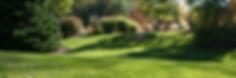 Lawn care, turf, programs, white grubb control