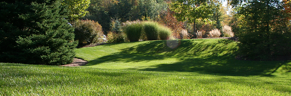 Lawn care, turf, programs, white grubb control