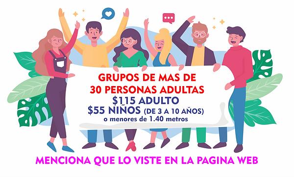 GRUPOS PAGINA WEB.png