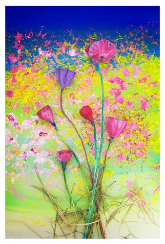 꿈의기호#214_40x60cm_archival pigment print_