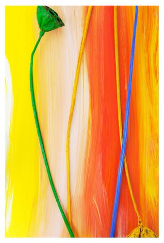 꿈의기호#28_40x60cm_archival pigment print_2