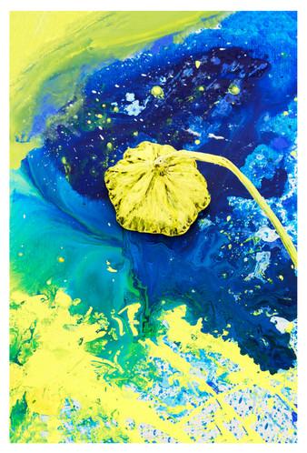 꿈의기호#199_30x45cm_archival pigment print_