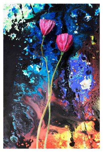 꿈의기호#187_40x60cm_archival pigment print_