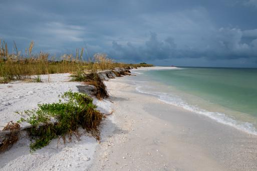 Marco Island 6.2020-3757.jpg