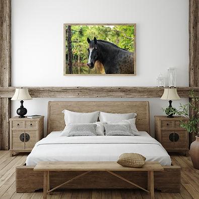 Horse in Bedroom.jpg
