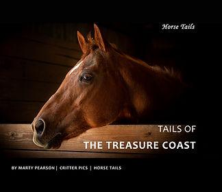 Horse Book Cover Final 9.19.jpg