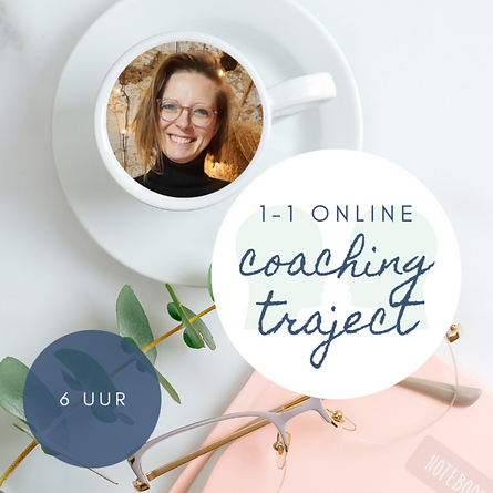 1-1-online-coaching-traject-post-webshop