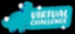 Website Elements_Virtual challenge.png