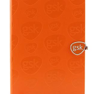 GSK Notebook.jpg