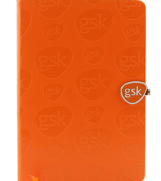 GSK Notebook.jpg