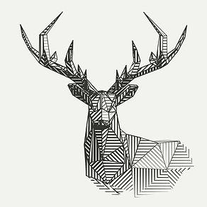 Deer-Cover-Square.jpg