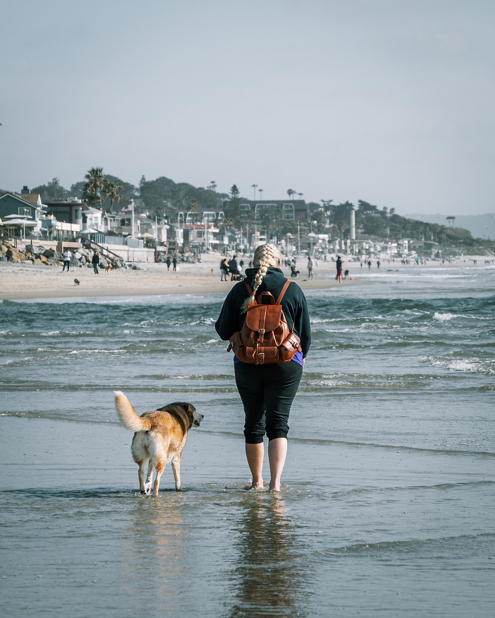 Young woman walking on the beach with dog