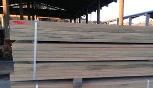 nz timber, timber processing