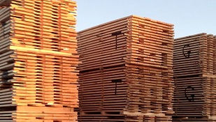 nz timber, certified quality