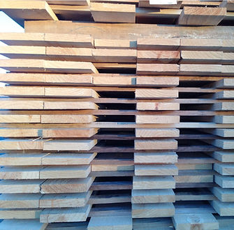 nz timber, radiata pine