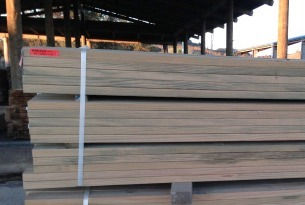 nz timber, timber processing