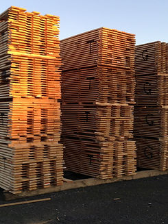nz timber, sustainability