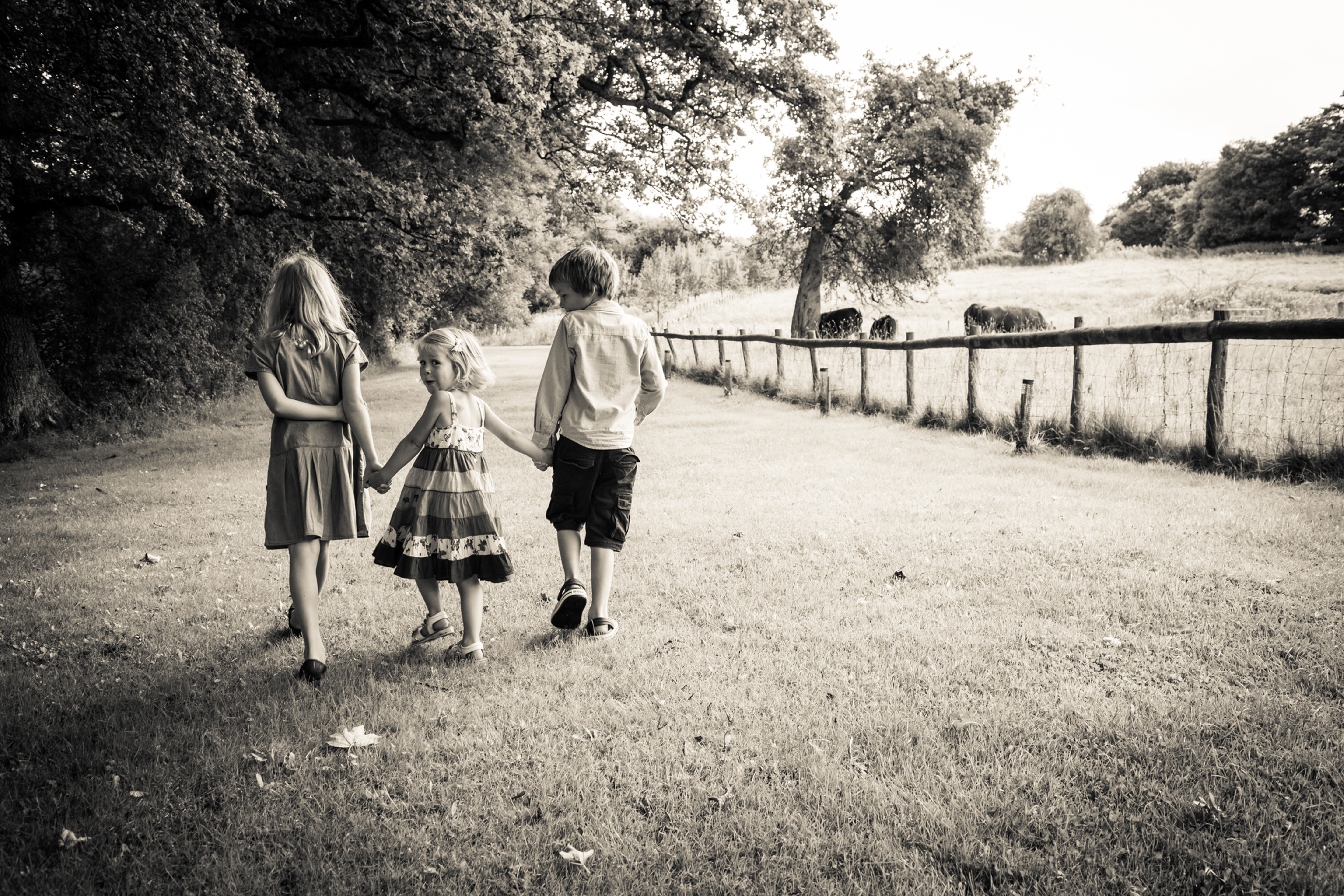 Family/Child Photography session