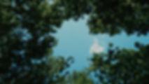 pexels-photo-28267-1.jpg