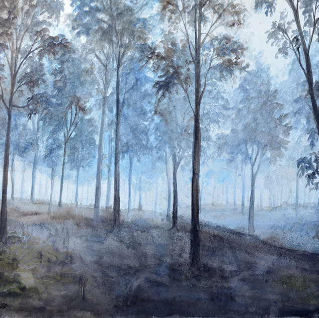 ForestMere forest watercolour
