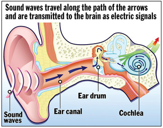EAR graphic - news info graphic