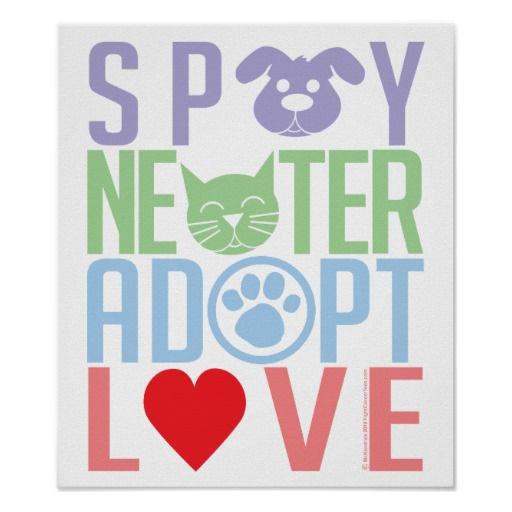 spay_neuter_adopt_love_2_poster-rf603c29