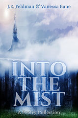 Into the Mist.jpg