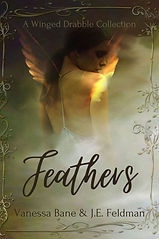 Feathers by J.E. and V.B..jpg