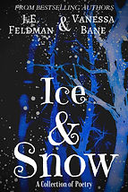Ice & Snow official.jpg