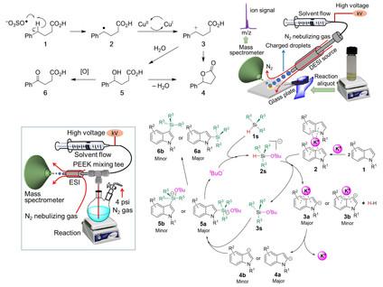 Mechanistic Organic Chemistry