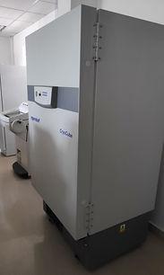 Eppendorf freezer.JPG