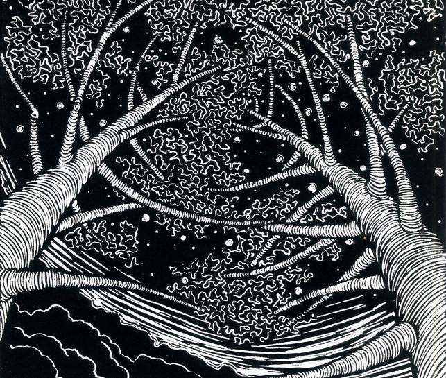 Stars & branches Lot Valley -  linocut.jpg