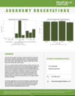 Washington Corn Fungicide.JPG
