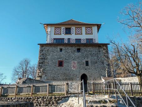 Instandsetzung Ruine Schloss Mörsburg, Winterthur