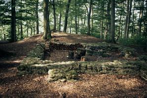 Ruine Hochwacht Rhinsberg