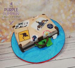 Australian suitcase cake