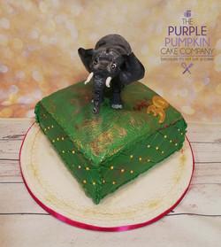 Elephant cushion cake