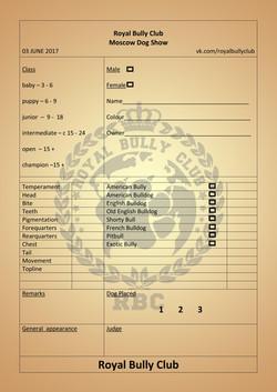 Diploma RBC _ добав лист