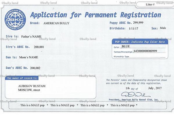 Application for Permaent Registation
