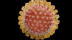 virus-4930122_1920.png