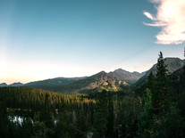 clear-sky-clouds-conifers-environment-58
