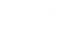 thepuddleproject LOGO.png