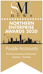 Purple Accounts Winner Northern Enterprise Awards 2020 Winners