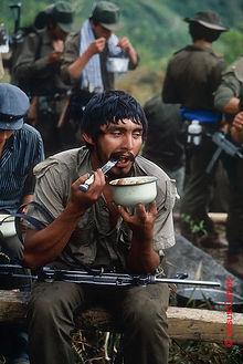Cópia de Guerrilheiros%20das%20FARC%20no