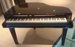 Piano shell - front profile