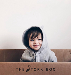 The Stork Box.png